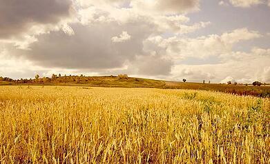 valoriser-exploitation-agricole