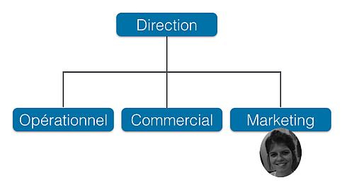 Organisation_hiérarchique
